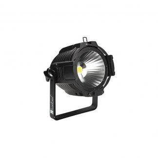Luxibel LX-161 Cobpar Lighting Fixture